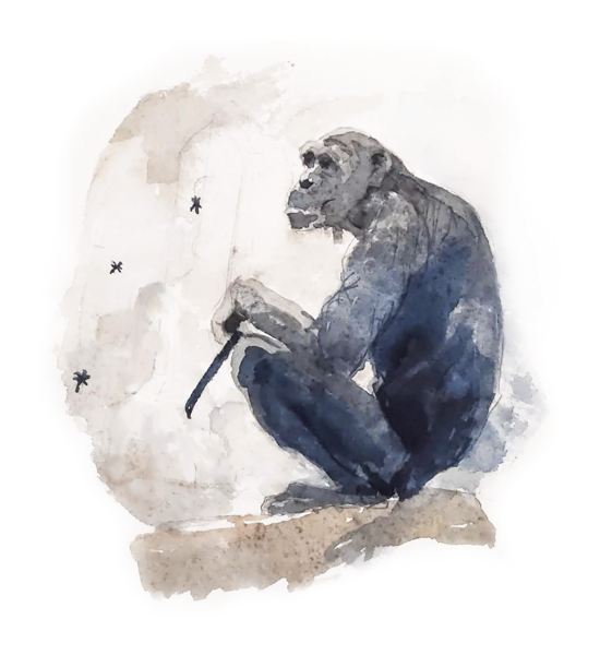 A lovely chimp doing a cave painting ...